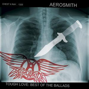 Portada del disco Tough Love: Best Of The Ballads de Aerosmith